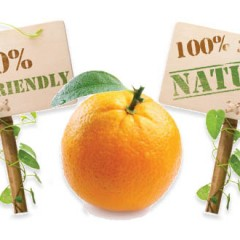 Solve All 2- Water Soluable Citrus Solvent