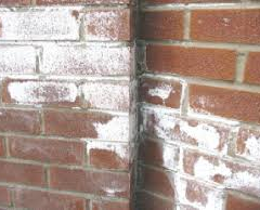 Efflorescence Removal From Masonry Surfaces