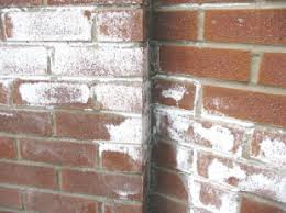 Efflorescence on Masonry