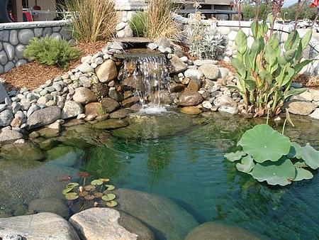pond leak waterproofing